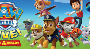 parking for paw patrol leeds